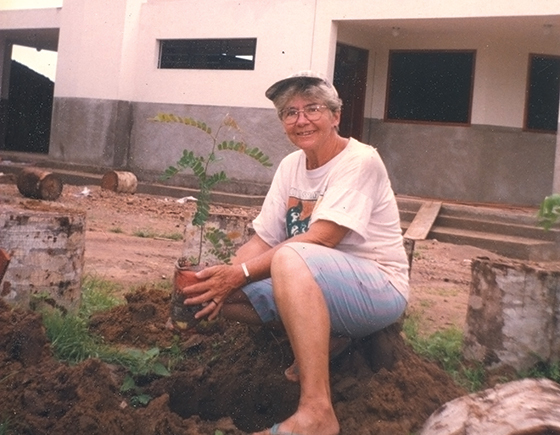 Not Buried, Planted: The martyrdom of Sister Dorothy Stang. by Kathryn Elliott