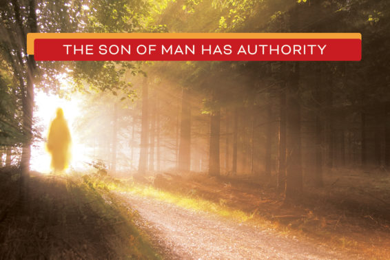 The Son of Man Has Authority: Jesus, Our King and Lord