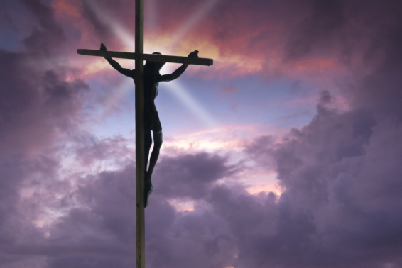The Triumphant Message of the Cross: What Jesus' victory means for each and every one of us. by Theresa Difato
