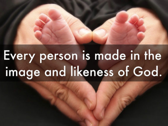 Made in the Image and Likeness of God by Fr. John Riccardo