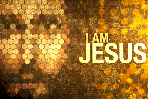 """I AM"": Jesus' response to the priests and council identified him as truly God. by Jeanne Kun"