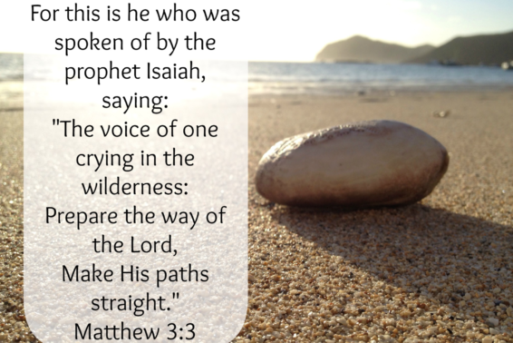 Servant of the Word: Understanding John the Baptist's call to us.