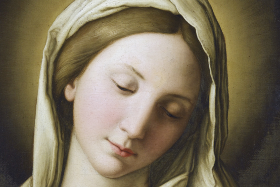 Mary, Full of Grace, Give Us Christ!: A Prayer of Pope Benedict XVI Honoring Mary Immaculate