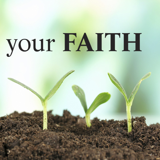 He Saw and Believed: The apostle John shows us how reason and faith work together.