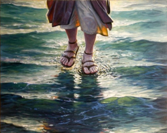 Walking on the Storms of Life: Meditations on Matthew 14:23-33 by Mitch Pacwa, SJ