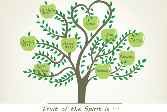 The Blessings of Hidden Fruit: God Is Doing More Than You Think